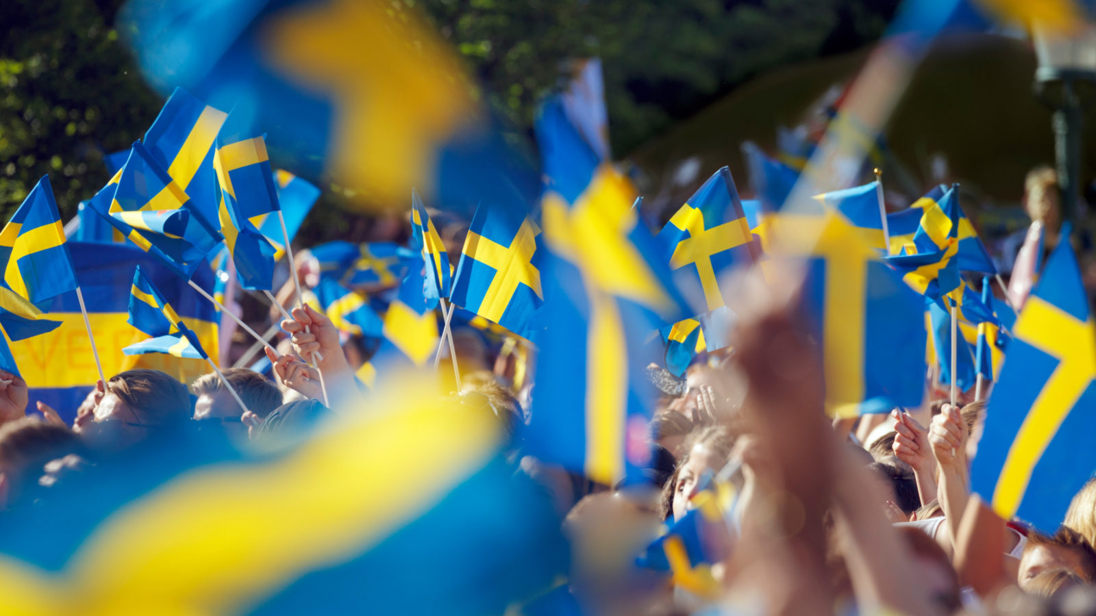 Image of hands holding Swedish flags